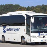 Niedermayer Busse 002-1